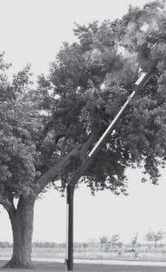 Archbold firefighters watched as sparks and flames lit up this tree along Co. Rd. 22, north of Co. Rd. C, near the home of Mindy Borer, who took the photo. Borer said the pole was damaged by an earlier motor vehicle accident. Then high winds Friday, Aug. 24 caused it to break, and the top fell into the tree.- courtesy photo