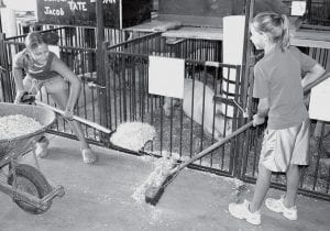 Jordan Pursel, 10, left, and Johanna Roth, 11, both of Pettisville, were busy Monday cleaning up in the hog barn at the Fulton County Fair. Jordan showed a pig in this year's junior fair, while Johanna showed a calf. Both girls brought home ribbons.- photo by David Pugh