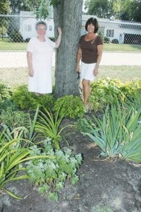 Grace Kinsey, left, and Dianne Roth, members of the Archbold Garden Club, in the flowerbed at Spengler Field, a project the club maintains as part of its civic activities. The club's history in the village goes back more than 50 years.– photo by David Pugh