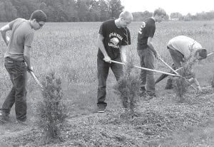 A new line of trees across the east end of Woodland Park will not only provide a windbreak and visual screen from the adjacent field, it will also keep errant soccer balls from becoming lost in the crops. It was the idea of Ella Weaver, left, an AHS senior who proposed the project and helped with the planting. She said she will apply the hours she spent toward her National Honor Society requirements. AHS students helped with the project, Friday, Sept. 7. Above: Cory Rocha, Koltin Zimmerman, Brodie Ranzau, and Aaron Piokowski, from left, rake out mulch around the trees. All are juniors except for Ranzau, who is a senior. Mike Weaver, of the United States Department of Agriculture, Natural Resources Conservation Service, coordinated the program using two grant programs to fund the project. He is Ella's father.– photo by David Pugh