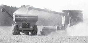A combine raises a cloud of dust while harvesting soybeans, Thursday, Oct. 4. The driver of the combine and the driver of a tractor pulling a wagon were working together to allow the combine to offload while continuing to harvest a field north of Archbold on St. Rt. 66. Even with high heat and drought over the summer, the soybean harvest is near average, reports indicate.– photo by David Pugh