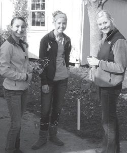 Members of the Archbold High School student council recently visited Sauder Village to help with Christmas decorations. The time fulfills a school requirement for volunteer service. Helping string lights are, from left: Erin Erbskorn, Jensyn Garrow, and Natalie Rupp, AHS sophomores. Others on hand were Kassidy Garrow, a senior, and Gavin Morton, a sophomore.– courtesy photo