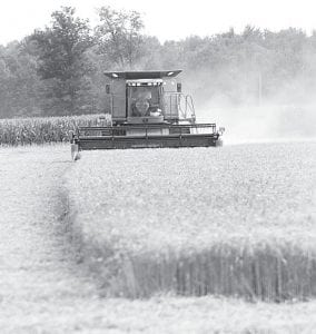 Area farmers were able to get in the fields last weekend to begin the wheat harvest. Above, a farmer combines a field west of Ridgeville Corners on Sunday, July 14.– photo by Mary Huber
