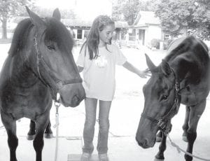 Kara Schnitkey, 8, rural Ridgeville Corners, with horses at Sauder Village. At left is Durango, a Belgian-quarter horse crossbreed, which will take over carriage-pulling duties from Big Guy, at right. Schnitkey raised $500 from a garage sale to help pay for Durango and the cost of a year's care for all of the Village horses. Overall, Sauder Village raised more than $6,500 for the horses.– photo by David Pugh