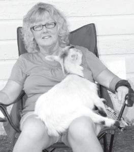 Eugene, a 16-month-old pygmy goat, relaxes in the lap of Linda Bollinger, Berkey. Bollinger is an advisor for the Goats & Udder Things 4-H Club.– photo by Mary Huber