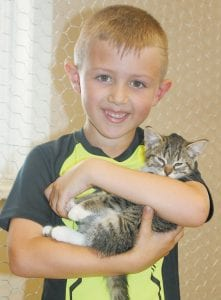 Daxton Meyer, 6, Archbold, holds a kitten during the Fulton County Humane Society Grand Opening, Saturday, July 1. Steve Wanner, Humane Society director, said the county has an overpopulation of cats.– photo by David Pugh