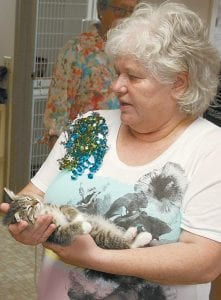 """Tracey Wanner, wife of Steve Wanner, Fulton County Humane Society director, holds a kitten named """"Jonnie Cat"""" during the humane society's open house. An application for the adoption of Jonnie Cat was accepted that day.– photo by David Pugh"""