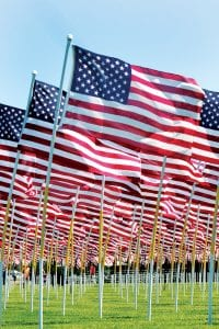 Several hundred American flags, part of the Flags of Honor memorial, stand at attention, Saturday afternoon, July 29. The memorial visited the Ridgeville American Legion Saturday and Sunday, July 29-30. The 294 flags within the memorial honor members of the United States Armed Forces who were killed in the global war on terror.– photo by David Pugh